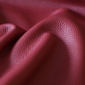 Protected grain leather
