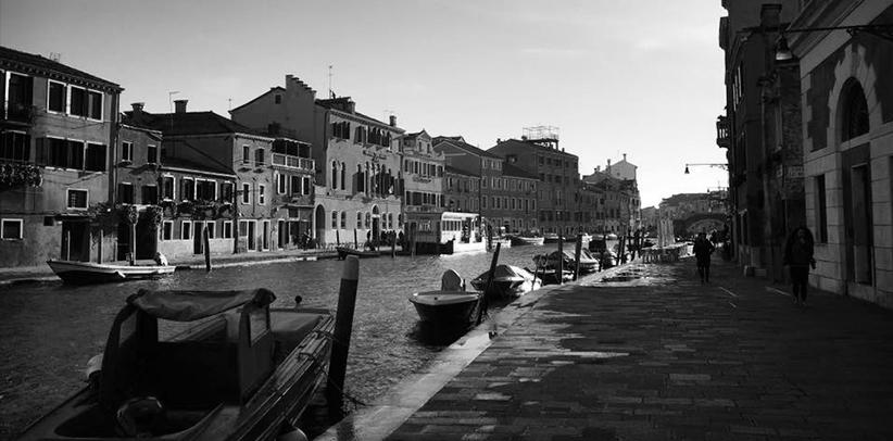 Venezia Ca' Foscari caso berto