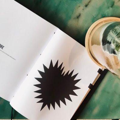 Batticuore - Spirito del 74 libro